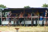 Traktortreffen 2010 (11/135)