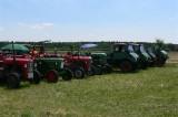 Traktortreffen 2010 (14/135)