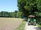 Oberfeld 2012 (6/20)